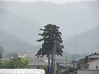 P5290015