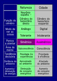 Summarypor1
