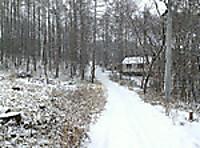 Snowyroad1