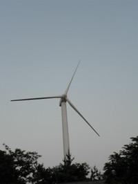 P5290044