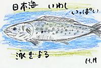 Iwasi2762
